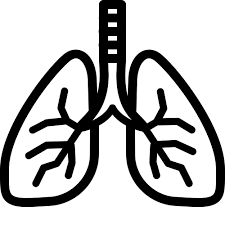 Lungs Icon - Free Download, PNG and Vector