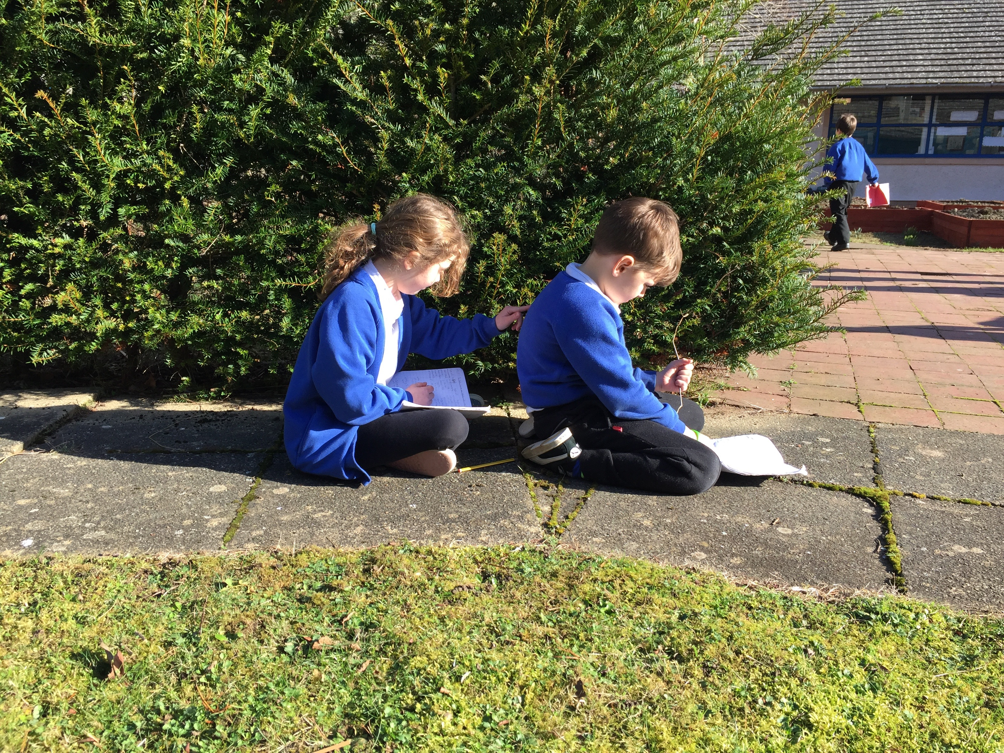 outdoor learning Our outdoor learning pack is designed for primary school teachers in scotland it is aligned to scotland's curriculum for excellence and has 28 activities.