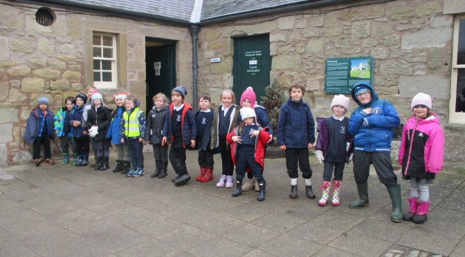 P1/2/3 Visit to The Hirsel