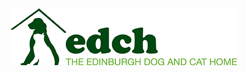 Volunteering Edinburgh Cat & Dog Home
