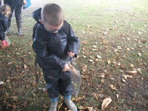 on the way we find lots of interesting things to put in our wonder bag. I found lots of leaves.