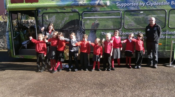 We're Wild About the Wild About Scotland Bus!