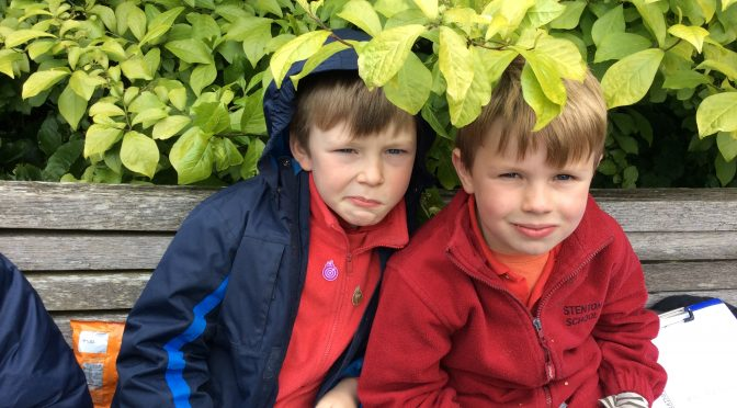 School trip to the Botanics