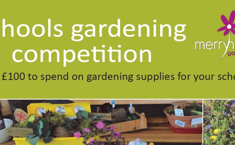 Merryhatton East Lothian Primary Schools 2016 Gardening Competition